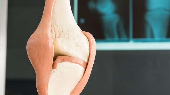 Medicina regenerativa en lesiones articulares. Una revolución para aliviar el dolor y restituir los tejidos dañados