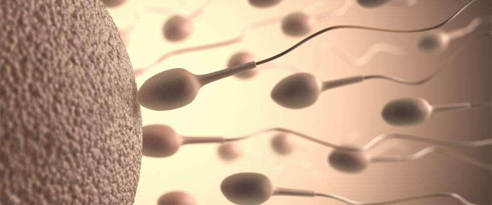 Técnica anticonceptiva masculina