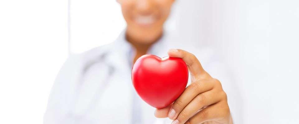 colesterol cardiovascular