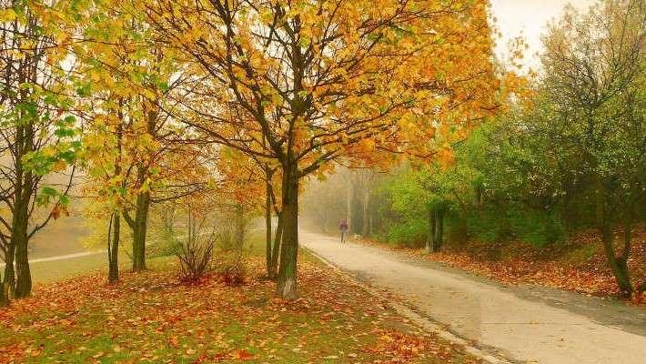 Arrancan las caminatas de Parques con Corazón