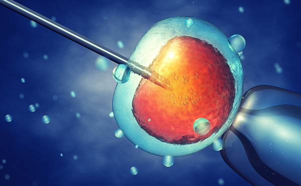 inseminacion-artificial-zaragoza