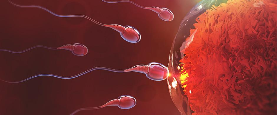 tecnicas-reproduccion-asistida